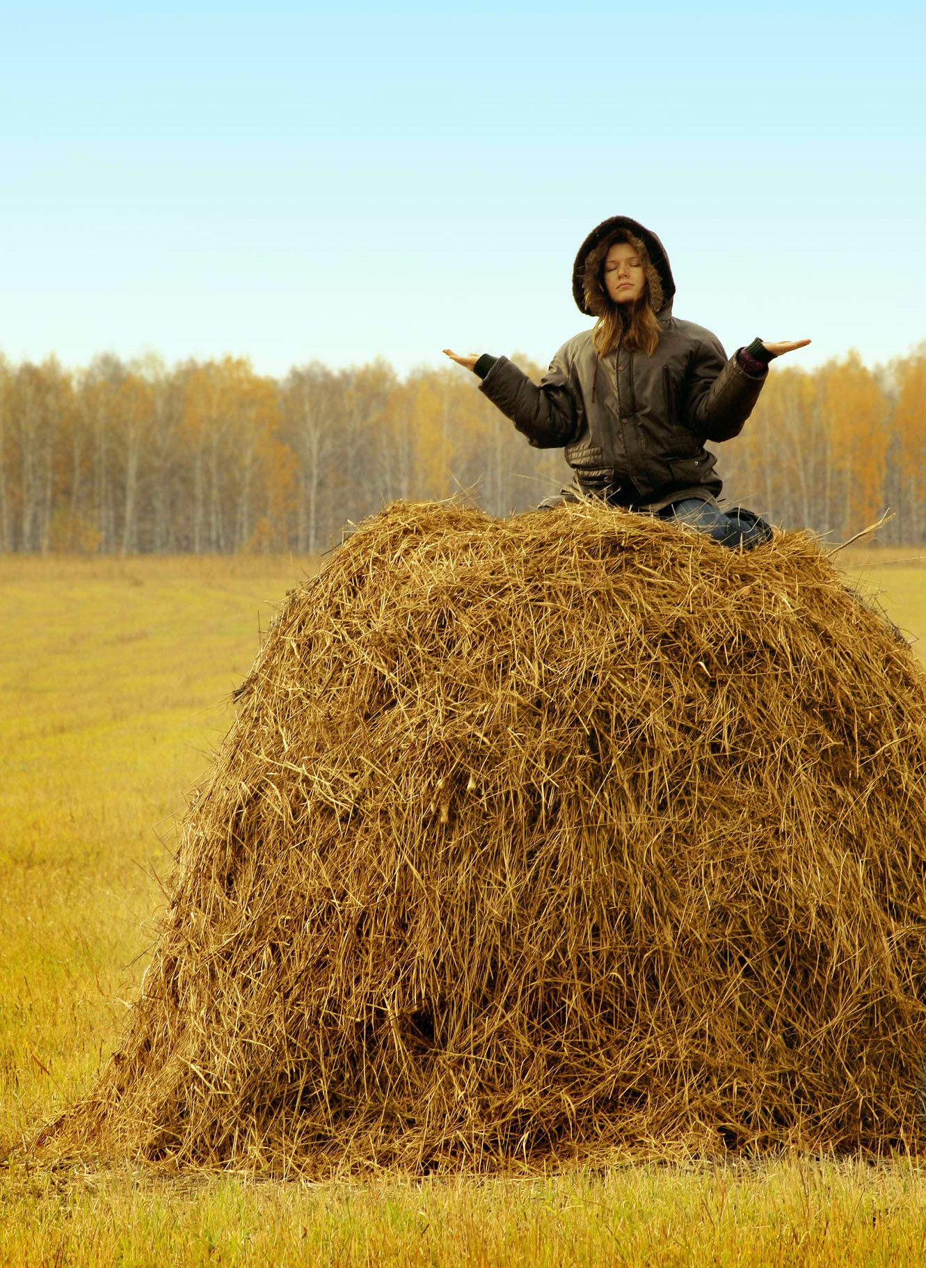 Definition of Haystack by Merriam-Webster